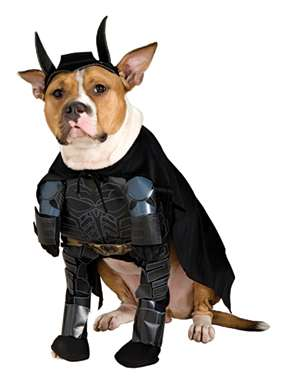 Dark Knight Dog Costume - Batman