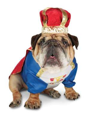 Canine King Dog Costume