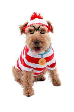 Waldo Woof Pet Costume