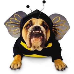 Zelda Bumblebee Dog Costume