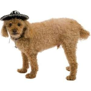 Mini Dog Sombrero